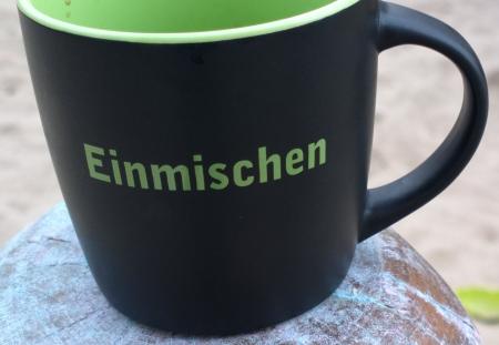 """""""Einmischen"""" gesehen in der Heinrich-Böll-Stiftung, Foto Andreas Schönefeld"""