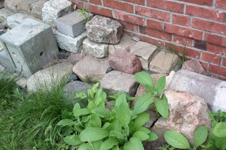 Steinmauer für Kleinsttiere, Foto: Andreas Schönefeld