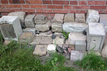 Die Steinmauer für Kleintiere, Foto: Andreas Schönefeld